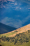 落矶山脉科罗拉多风景 库存照片