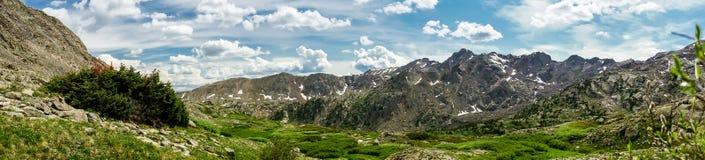 落矶山脉风景-树和山在14,000英尺 库存照片