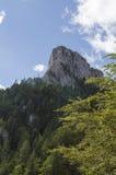 落矶山脉-比卡兹-罗马尼亚 库存图片