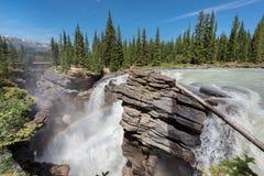 落矶山- Athabasca在贾斯珀国家公园下跌 免版税库存图片