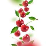 落从空气的樱桃和叶子 库存图片