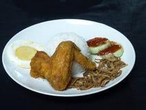 著名亚洲食物马来的中国米Nasi Lemak 免版税库存照片