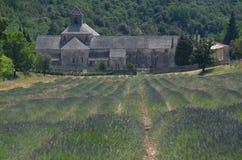 著名修道院在Senaque,普罗旺斯 免版税库存照片