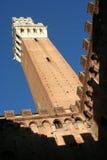 著名多数s siena塔 免版税库存照片