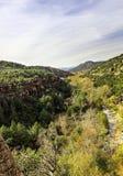 著名峡谷的小河其橡木红色晃动砂岩sedona 免版税库存图片