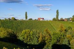 著名旅游酒路、weinstrasse在边界在奥地利之间和斯洛文尼亚 免版税库存图片