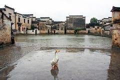 著名月亮池塘在古老宏村村庄,瓷 库存图片