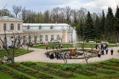 著名森山和狮子喷泉在Peterhof宫殿 免版税库存照片