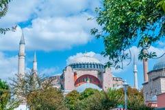 著名清真寺在土耳其市伊斯坦布尔 库存图片