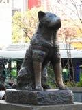 著名狗Hachiko, Hachiko广场,涩谷,东京,日本的古铜色雕象 免版税库存图片
