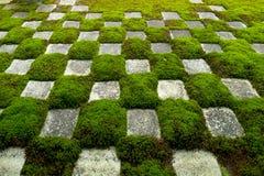 著名石头和青苔庭院 免版税库存照片