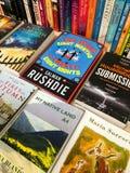著名英国文学小说在图书馆书店的待售 免版税图库摄影
