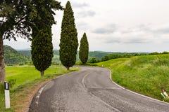 著名路的细节在Monticchiello附近的 免版税库存图片