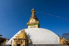 著名猴子寺庙在尼泊尔 库存图片