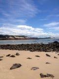 著名负子蟾海滩的看法-网的 库存照片
