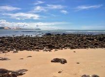 著名负子蟾海滩的看法-网的 免版税库存图片