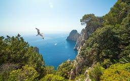 著名Faraglioni晃动,卡普里岛海岛,意大利 免版税库存图片