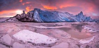 著名Fjallsarlon冰川和盐水湖有游泳在冻水的冰山的 免版税库存照片