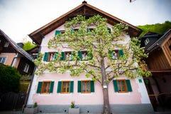 著名Hallstatt山村风景图片明信片视图有Hallstaetter的在奥地利阿尔卑斯, Salzkammer的区域看见 免版税库存照片