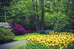 著名Keakenhof庭院 库存图片