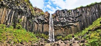著名Svartifoss瀑布(黑秋天)在冰岛 库存照片