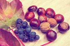 葡萄、叶子、栗子和核桃在木地面 库存图片