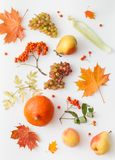 葡萄、梨、南瓜、桃子和秋叶用花揪在白色 图库摄影