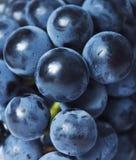 葡萄关闭  免版税库存照片