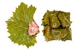 从葡萄叶子的Dolma有剁碎的 免版税图库摄影