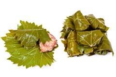 从葡萄叶子的Dolma有剁碎的 免版税库存照片