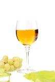 葡萄和杯分支酒 免版税图库摄影