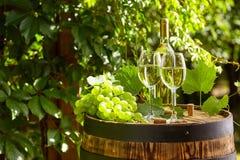 葡萄和白葡萄酒在木桶 库存图片