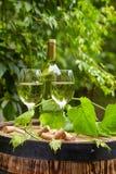 葡萄和白葡萄酒在木桶 库存照片