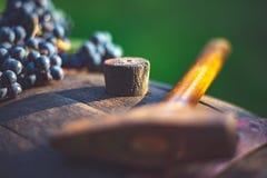 葡萄和葡萄酒酿造锤子在桶 库存图片