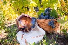葡萄和酒构成在葡萄园里 免版税库存图片