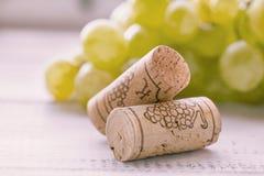 葡萄和酒黄柏 库存图片