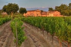 葡萄园和一个小农场普罗旺斯duringh日落的 免版税库存图片