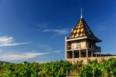 葡萄园和壮观的大别墅在伯根地建筑风格修造的Portier。区域博若莱红葡萄酒,法国 图库摄影