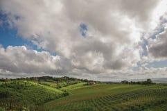 葡萄园和小山概要与别墅在上面在托斯坎乡下 库存图片