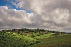 葡萄园和小山概要与别墅在上面在托斯坎乡下 免版税库存图片