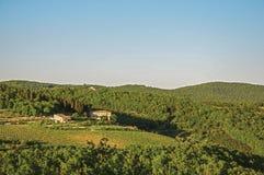 葡萄园和小山看法与别墅一个森林上面的在托斯坎乡下 库存照片