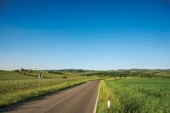 葡萄园和小山看法与别墅在上面,在一条路附近在托斯坎乡下 图库摄影