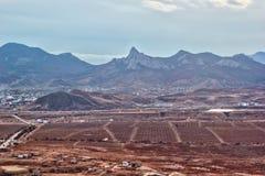 葡萄园和山土坎卡拉达 库存照片
