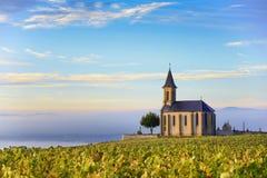 葡萄园和教会在有大蓝天的博若莱红葡萄酒在sunr 免版税库存图片