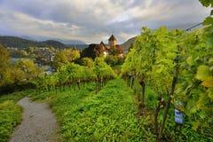 葡萄园和施皮茨城堡 免版税库存图片