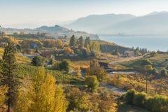 葡萄园和果树园有湖的和山秋天风景在距离 免版税库存图片