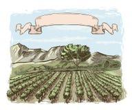 葡萄园和酿酒厂 用手被画的传染媒介剪影 皇族释放例证