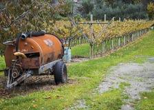 葡萄园在特伦托自治省 库存照片
