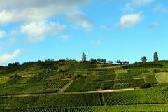 葡萄园在阿尔萨斯,法国 库存图片