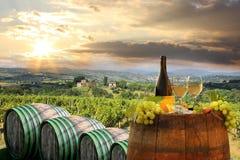 葡萄园在Chianti,托斯卡纳 免版税库存图片